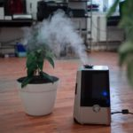 Indoor Air Pollution: Why Your Home Has More Air Pollutants Than the Outdoors