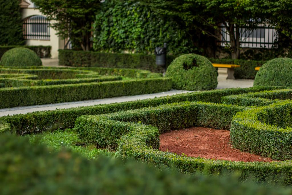 hedge maze landscape